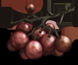 Grappe de vigne �pineuse.